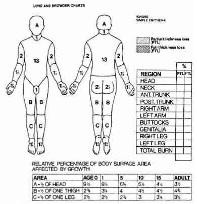 2263_275_44-lund-and-browder-chart-for-burns